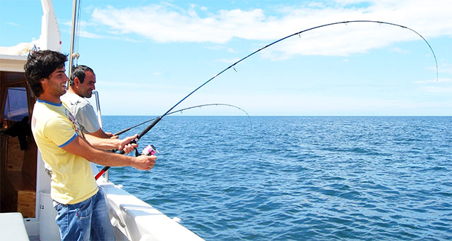 Fishing Rules and Top Fishing Spots in Qatar
