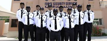 Force Security Services