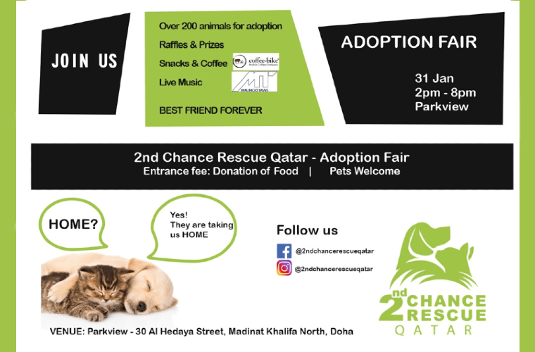 2nd Chance Rescue Qatar- Adoption Fair